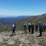 Snowy Mountains walking tour