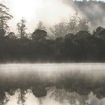 Tarkine Wilderness 5 Day Walking Tour