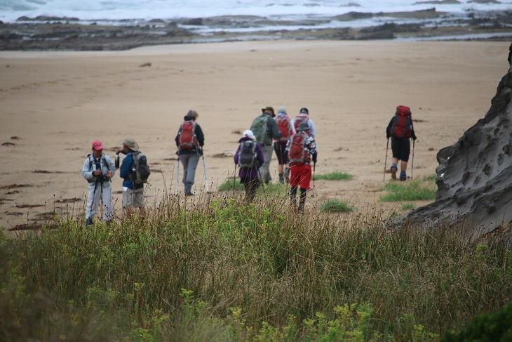 GOW walkers on beach small
