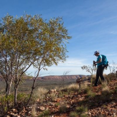 Woman walking in central Australia