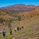 Flinders Ranges Walking Tour with Park Trek - Hikers traversing an escarpment