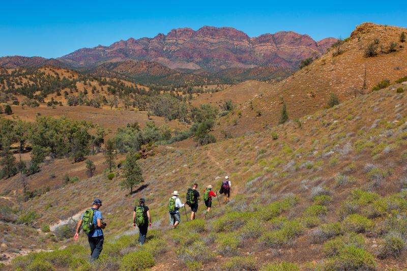 Flinders Ranges Walking Tour with Park Trek - Hikers traversing an escarpment