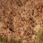 Flinders Ranges Walking Tour with Park Trek - Hikers shadowed by the sheer cliffs