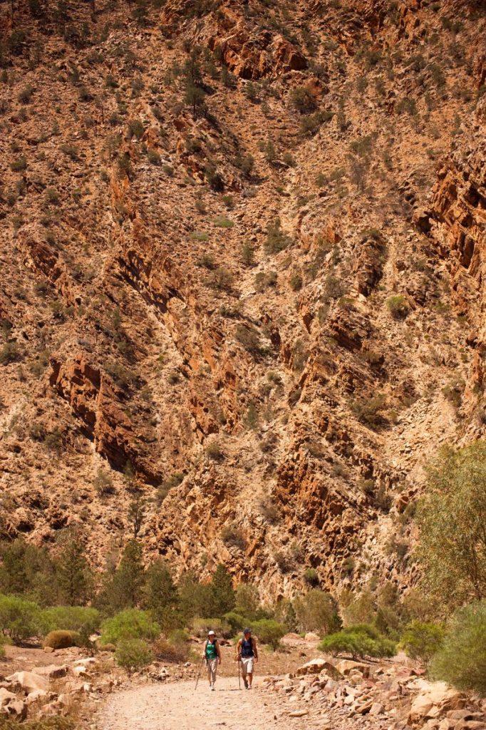 Flinders Ranges Walking Tour with Park Trek - Hikers shadowed by the sheer cliffs