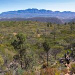 Flinders Ranges Walking Tour with Park Trek - Breathtaking views