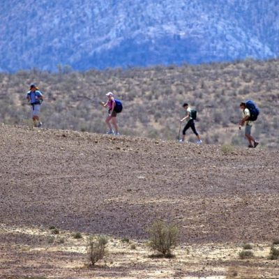 Flinders Ranges Walking Tour with Park Trek - Hikers in single file