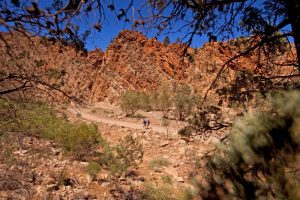 Flinders Ranges Walking Tour with Park Trek - Hikers making their way along the hiking trail