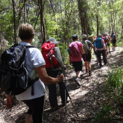 Bibbulmun Walking Track - Hikers walking through the bush