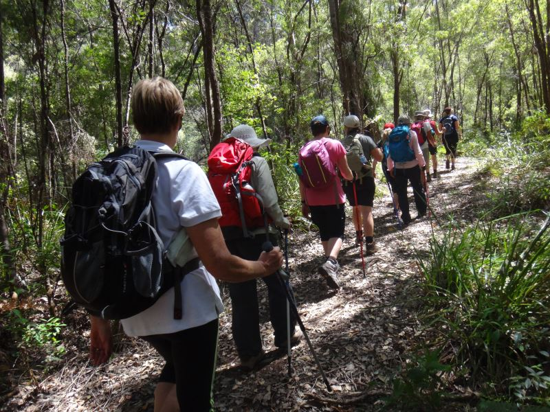 Bibbulmun Walking Track - Hikers walking through the bush