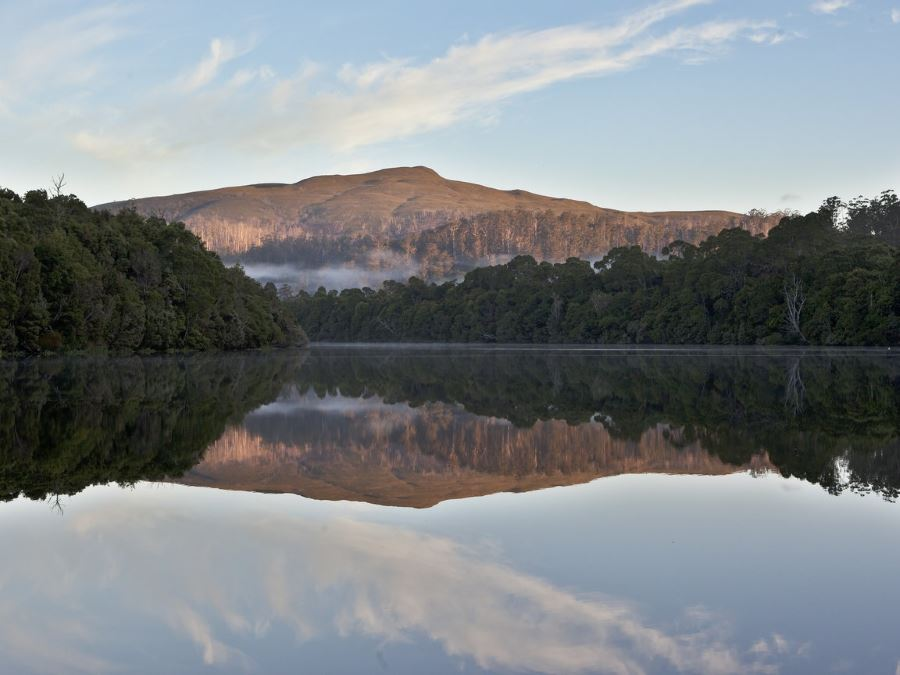 Tarkine Wilderness Walking Tour