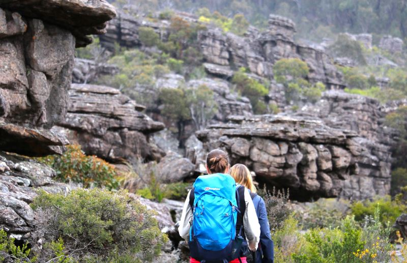 Eco Walking Tours by Park Trek