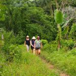 Walking through tropical Fiji