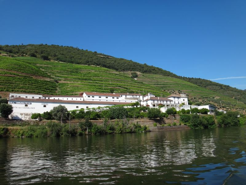 Portugal Duoro Valley Walking Tour - From the river