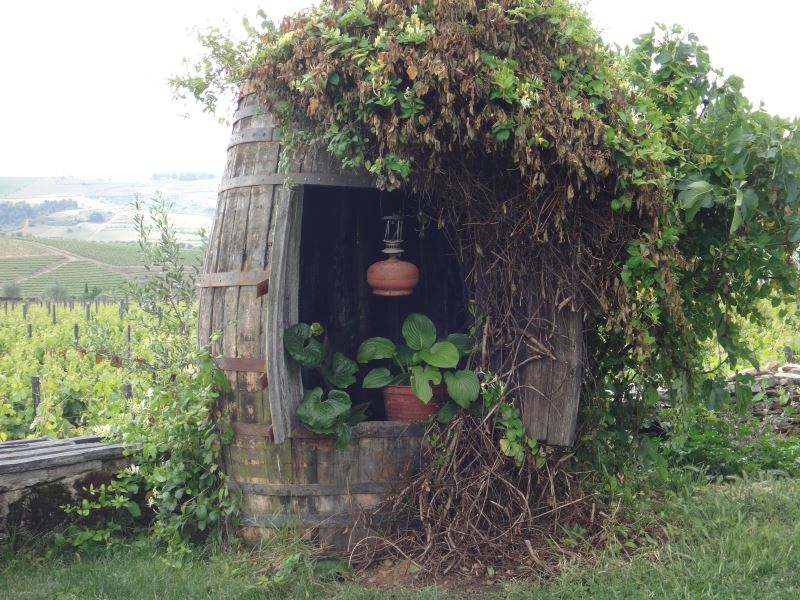 Portugal Duoro Valley Walking Tour - Old wine barrel used in the garden