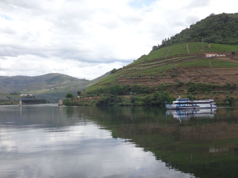 Portugal Duoro Valley Walking Tour - On the river with hills