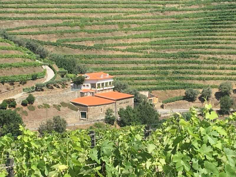 Portugal Duoro Valley Walking Tour - Scenic views