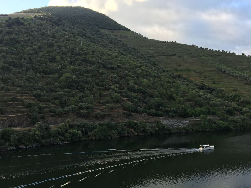 Portugal Duoro Valley Walking Tour - The boat ride on a river