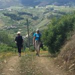 Portugal Duoro Valley Walking Tour - Walkers descending