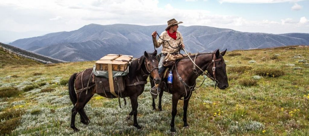 Man with packhorse - Vic Alps Walking Tour with Pack Horses
