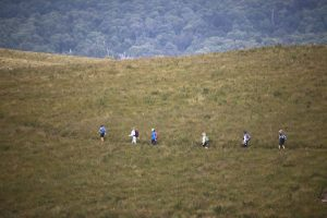 Hikers in Tasmania