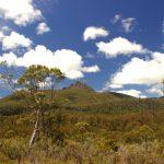 mountain view - South West Wilderness walk