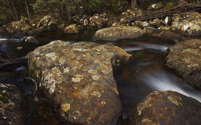 rocky stream - South West Wilderness walk