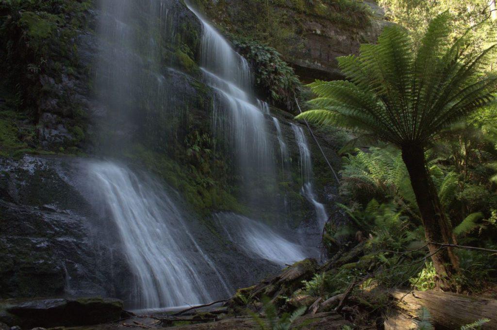 waterfall - South West Wilderness walk
