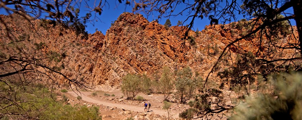 Hiking in the Flinders Ranges