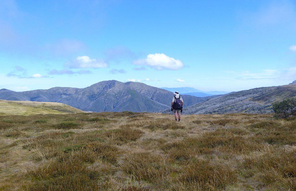 Looking across to Mt Feathertop